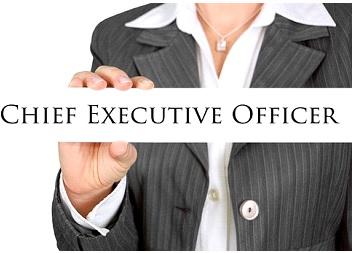 ¿Qué es CEO, CFO y COO?